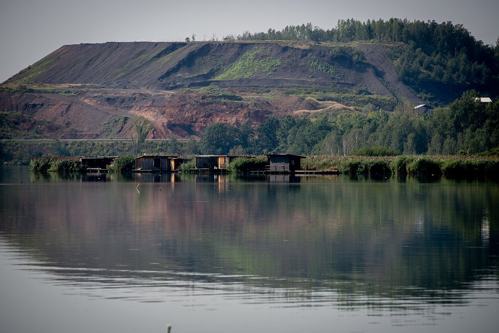 Uhynulé ryby v Heřmanickém rybníku, 28. srpna 2019 v Ostravě.