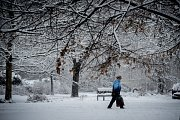Sněžení v Ostravě, úterý 8. ledna 2019. Ilustrační foto.