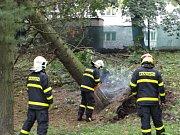 Odstraňování následků noční vichřice, snímek ze zásahu hasičů 24. září 2018 v Ostravě.