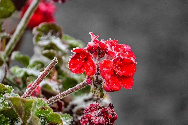 Na Pustevnách se objevil první sníh, zahřát se můžete v Libušíně či Maměnce.