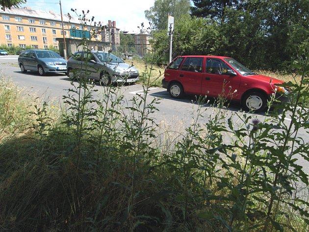 V PÁTEK NEPOKOSENO. Ještě v pátek byla na některých místech obvodu Jih v části starého Zábřehu nepokosená tráva.
