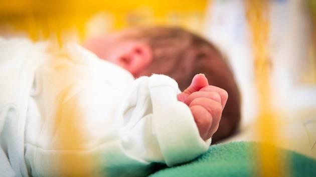 Dvojčátka se za červenec ve Fakultní nemocnici Ostrava narodila šestnáctkrát.