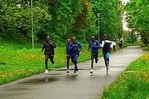 Atleti při tréninku v ostravském parku před startem Zlaté tretry v Ostravě, květen 2021.