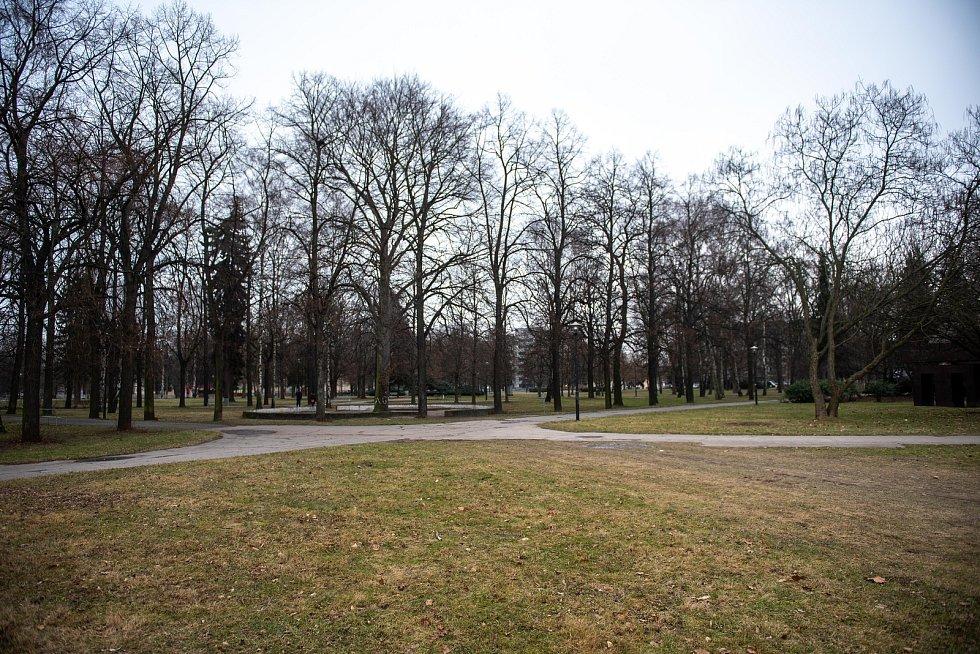 Sad Dr. Milady Horákové, leden 2020 v Ostravě.