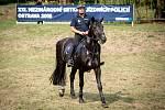 XXI. mezinárodní setkání jízdních policií v Komenském sadě, 1. září 2018 v Ostravě.
