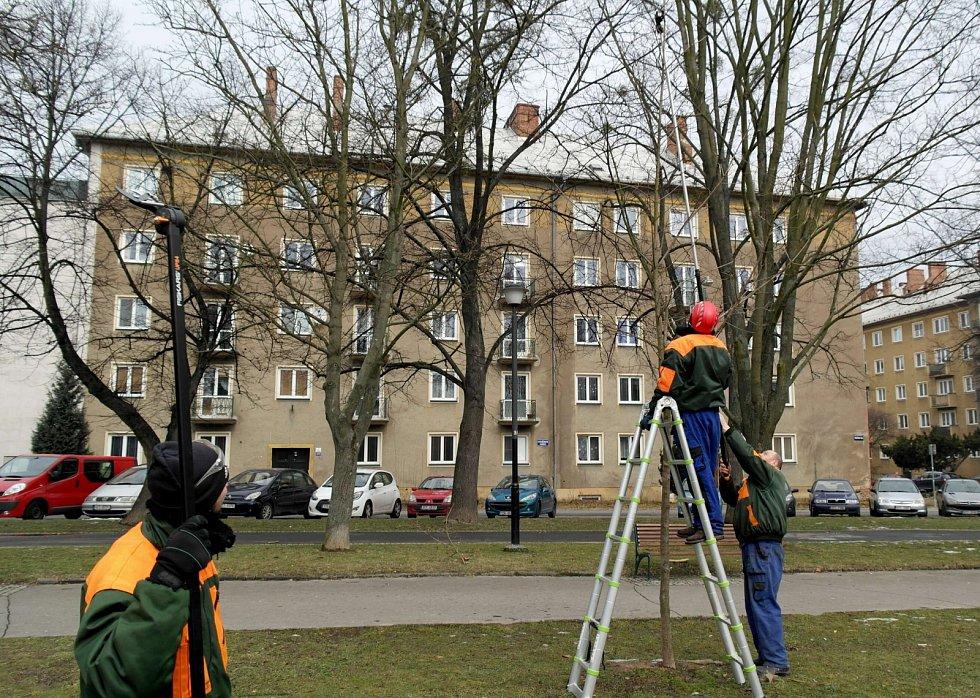 Školení pro porubské údržbářů obvodní zeleně na Havlíčkově náměstí.