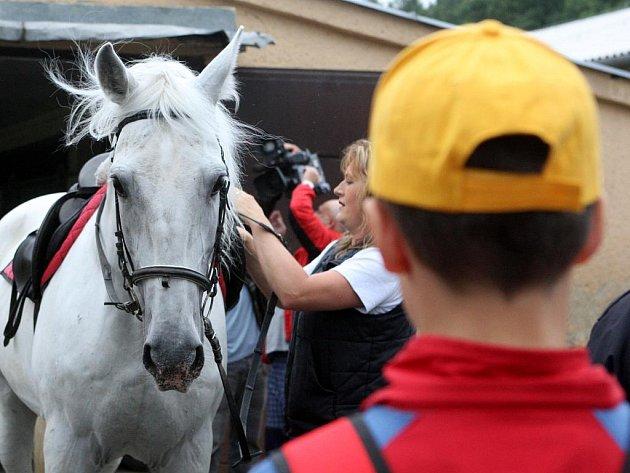 """""""S koněm to je jako s kolem,"""" vysvětloval strážník dětem se žlutými kšiltovkami na hlavě. Ty se tento týden účastní táboru pořádaného Městskou policií Ostrava."""