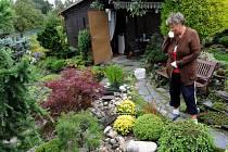 Zdeňka Borkalová společně se svým mužem tráví na zahrádce v kolonii v Michálkovicích hodně volného času. Jejich skalka, jezírko i bonsaje potěší nejen oči, ale i pohladí po duši.