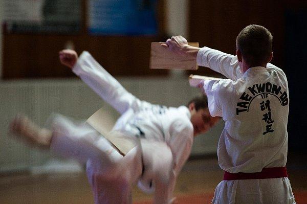 Slavnosti bojových umění