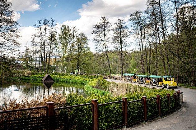 Zoologická zahrada Ostrava. 8.května 2021.