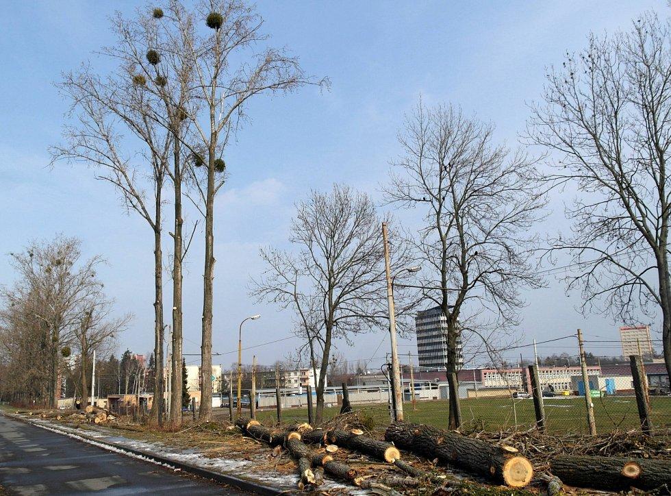 Pokácené letité topoly ve Finanční ulici u porubské tramvajové vozovny.