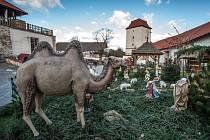 Tradiční výstava betlémů v areálu Slezskoostravského hradu.