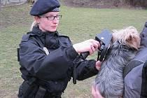 Strážníci také kontrolují, zda psi mají čip nebo čitelné tetování.