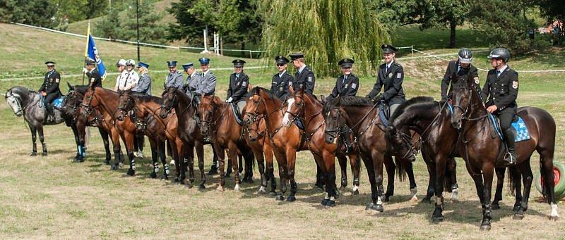 Nejlepší policisté a strážníci na koních se v sobotu představili v Komenského sadech v Ostravě, kde se konal 16. ročník Mezinárodního setkání jízdních policií.