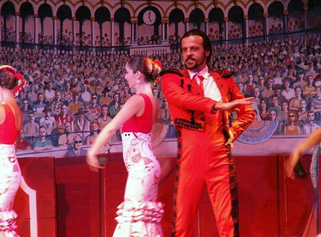 Mistr flamenka José Leon