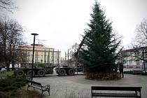 Stavění nového vánočního stromu na náměstí SNP v Ostravě.