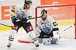 7. kolo hokejové extraligy: HC Vítkovice Steel – Bílí Tygři Liberec 2:3