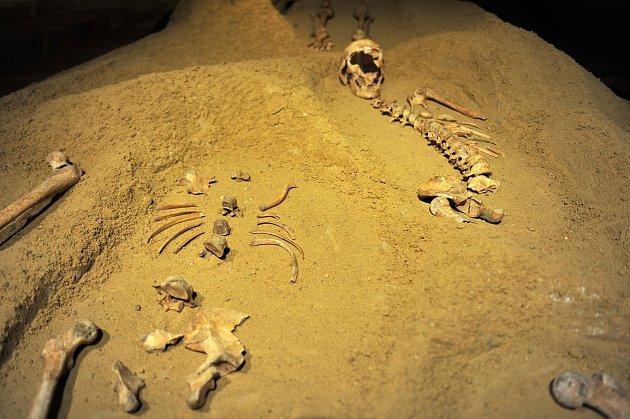 Snímek zvýstavy Příběh zapomenutého hřbitova Ostravského muzea.