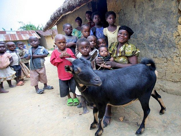 Certifikát pod stromečkem přinese pomoc rodinám o tisíce kilometrů dále. V tomto případě v Kongu.