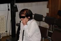 Ženě v případě uznání viny hrozí osm až šestnáct let vězení.