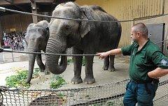 Ostravská zoo má za sebou jednu z nejúspěšnějších sezon ve své historii.