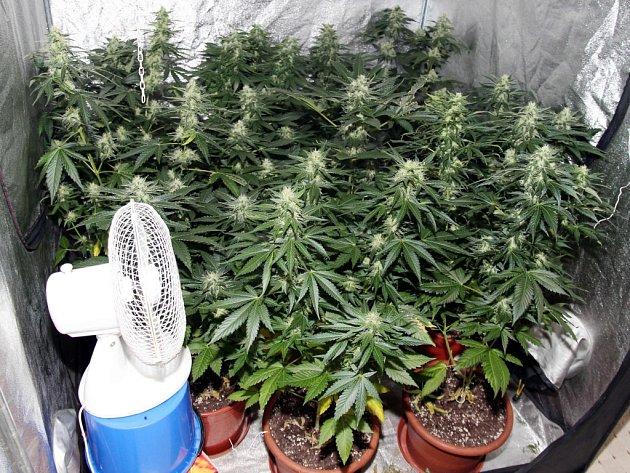 Marihuana a pervitin, nejčastější omamné látky na ostravské drogové scéně.