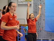 V ostravské hale Sareza se v sobotu odehrálo MČR žen ve futsalu. Titul získaly futsalistky Chlebičova. Domácí Baník skončil stříbrný.