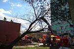 Snímek z odstraňování následků silného větru (vyvráceného stromu) v Ostravě.