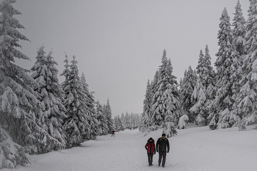 Turisté v Jeseníkách, 30. ledna 2021 na Ovčárně.