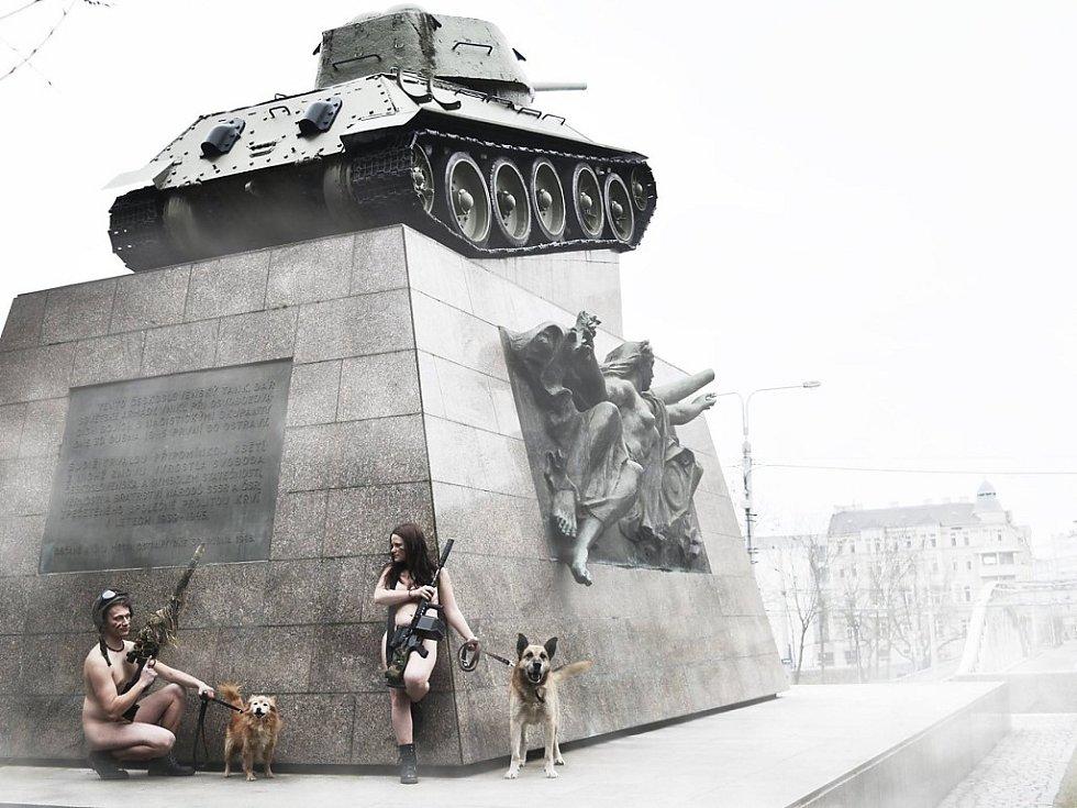 Unikátní fotografie mají opuštěným zvířatům najít domov.
