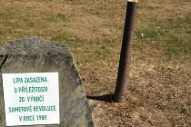 Památeční lípu v Ostravě-Porubě zničil vandal