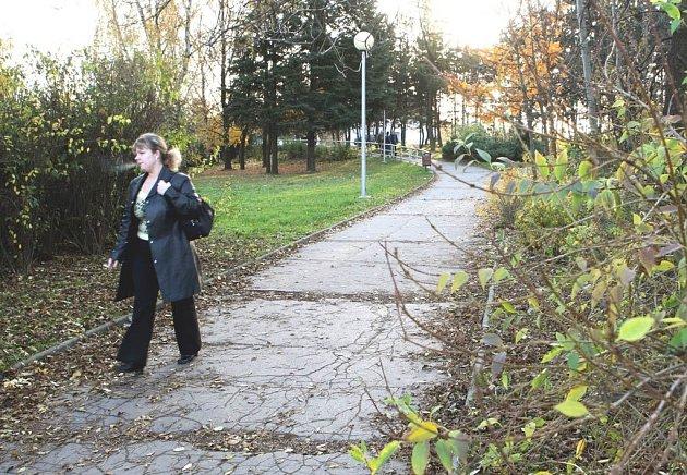 V těchto místech, v parčíku u nádraží Ostrava-Vítkovice se ve středu ráno procházelo stádo kanců