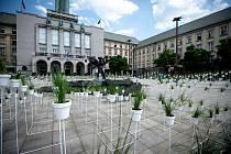 Výstavy Victoria natura (autoři: Juráš Lasovský & Haenke) na Prokešově náměstí v rámci Landscape festival, červen 2019 v Ostravě.