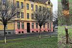 Několika zdravých stromů v parčíku v Jírské ulici v Ostravě poškodili neznámí vandalové. Městský obvod Moravská Ostrava a Přívoz zveřejnil smutnou zprávu v neděli dopoledne, podává trestní oznámení, hledají se i případní svědci.