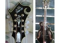 Ukradená mandolína