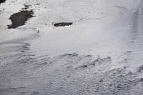 Podzim je letos hodně skoupý na dešťové srážky. Projevuje se to nejen na nižší hladině vody v přehradách, ale také v řekách.