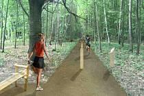 Vizualizace nového běžeckého oválu v lese mezi Porubou a Krásným Polem, který má začít sloužit do konce letošního roku.