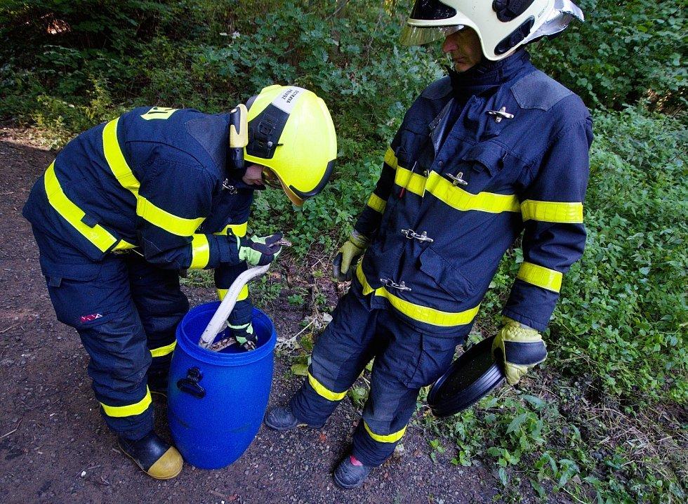 Jedna ze tří krajt, které minulý měsíc odchytili ostravští hasiči a policisté.