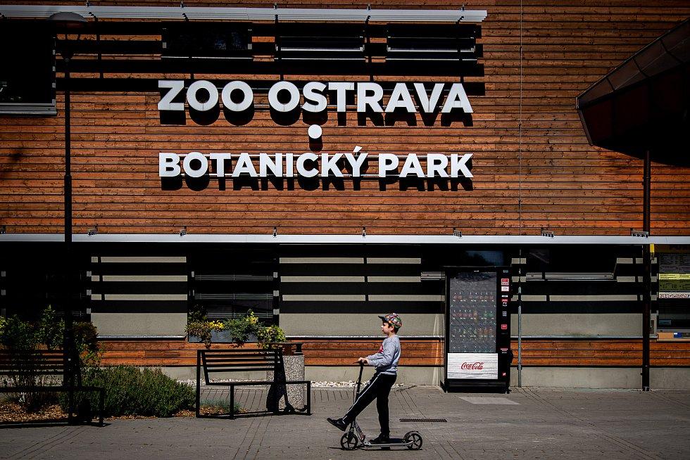Ilustrační snímek ze Zoo Ostrava.