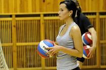 Společný trénink fanoušků a profesionálních volejbalistů v hale Sareza v Hrušovské ulici.