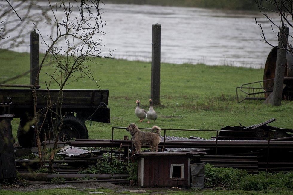 Řeka Odra v ostravské části Polanka nad Odrou a Proskovice, pátek 28. dubna.
