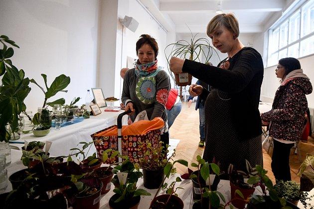 Rostlinný bazar vGalerii výtvarného umění vOstravě.
