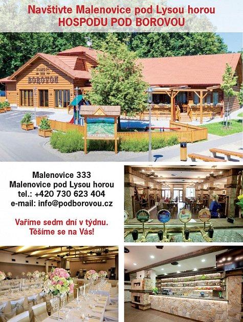 Hospoda Pod Borovou, Malenovice 333