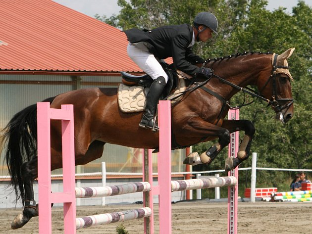 ŠAMPIONY v kategorii pětiletých koní se stali René Olšák s Oktávou 1 z JK Hřebčína Albertovec.