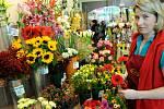 8. březen - Mezinárodní den žen