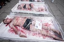 Hnutí s názvem 269Life se před obchodním centrem Forum Nová Karolina v Ostravě představilo se svou akcí Zvíře není zboží.