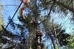 Snímek ze zásahu při záchraně paraglidisty.