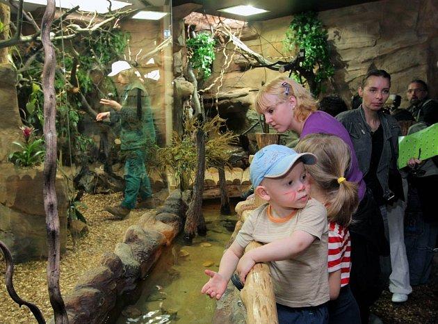 Malá Amazonie měla premiéru v ostravské zoo