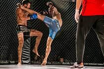 JEDENÁCT ATRAKTIVNÍCH zápasů v kleci mohou v pátek od 18 hodin zhlédnout fanoušci MMA v ostravském hotelu Clarion.
