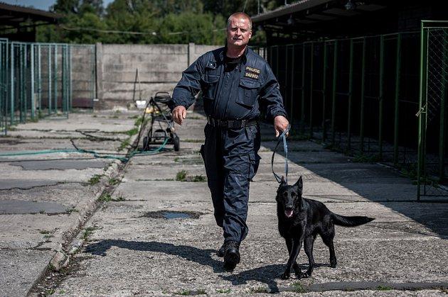 """Na svou """"práci' se Runda smajorem Kozákem připravuje druhým rokem. Předtím byla vychovávána vpolicejní chovatelské stanici vDomažlicích."""
